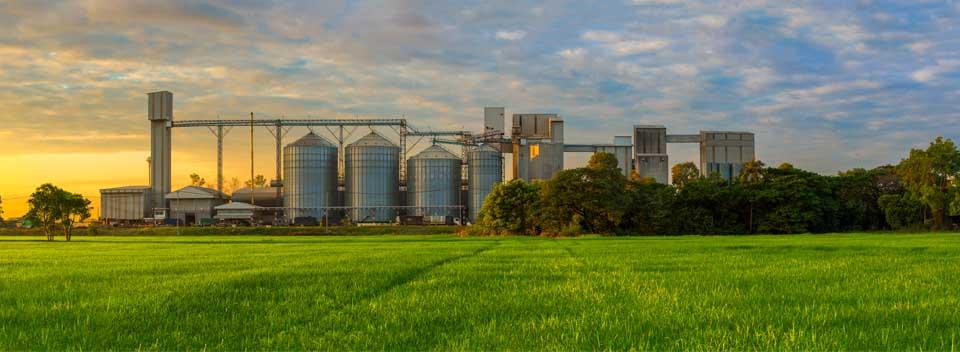 Sustainability Ethanol Production Industry